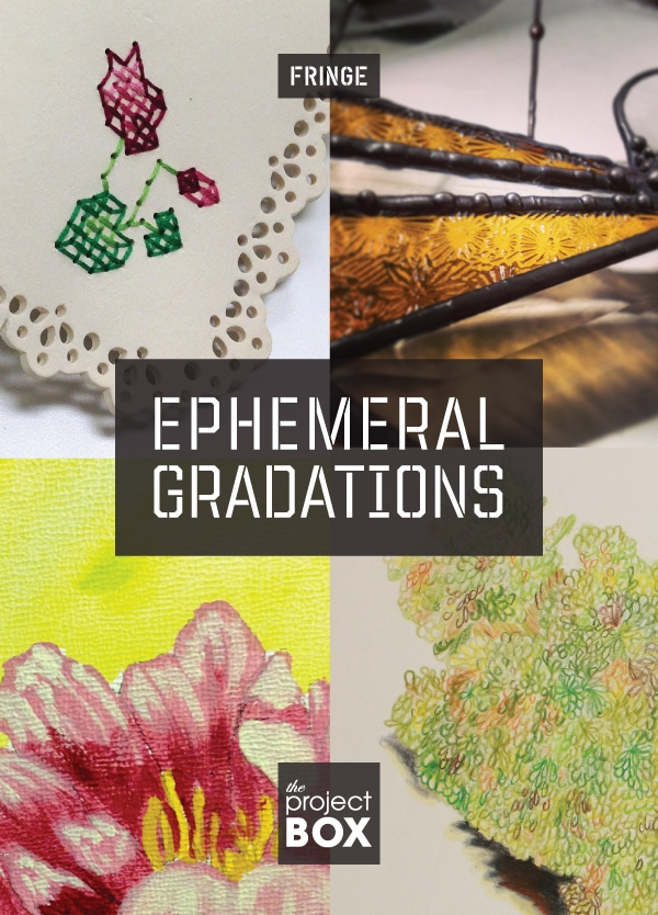 Ephemeral Gradations The Project Box Hive Design